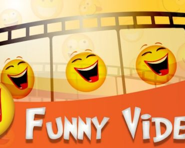 watch-the-best-videos-on-the-internet